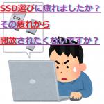 【用途別】SSD容量のオススメはいくつだ?【主観を添えて】